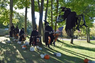 oct-2016-fall-pics-114-witches