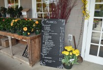 farm flowers and prices