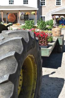 Flowers and Tractor