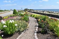 rye beach flower garden club